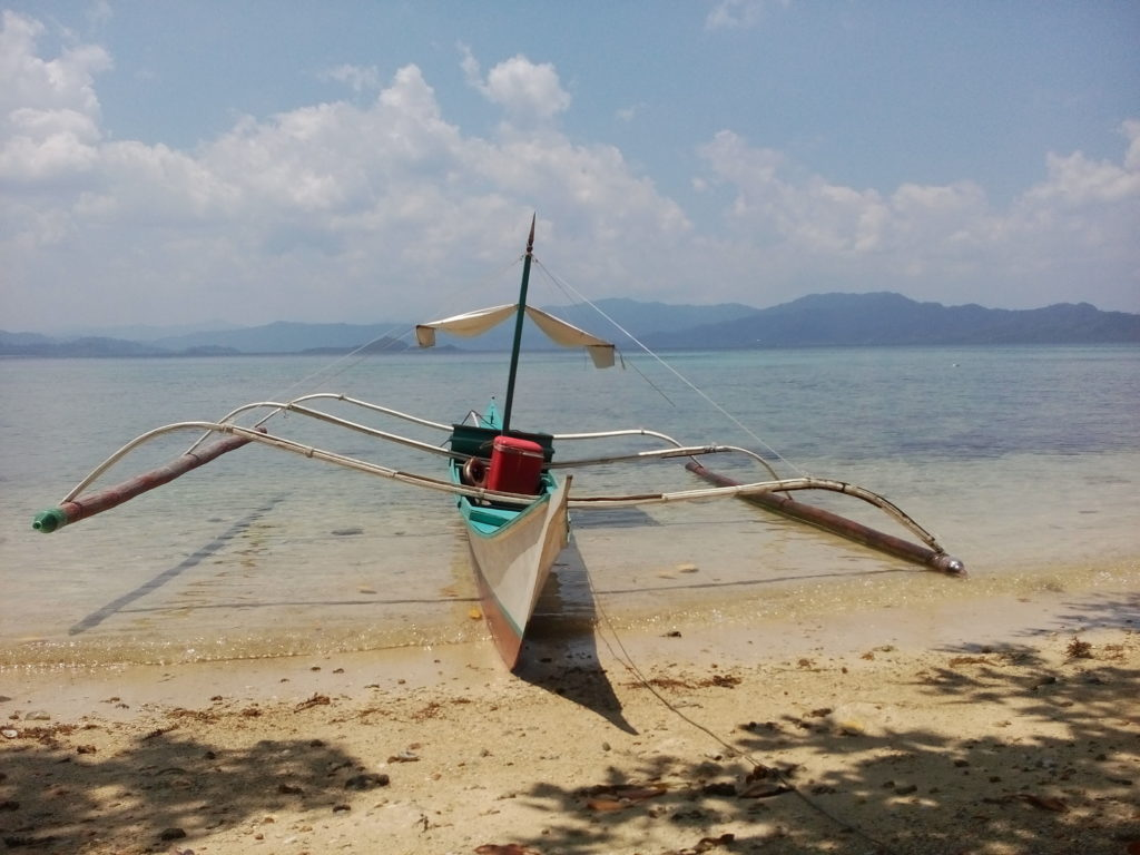 8.75 Hectares Island For Sale, San Vicente Palawan